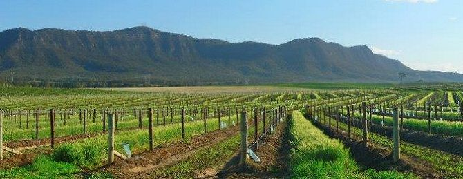Hunter Valley Boutique Wine Tours | Take the time…