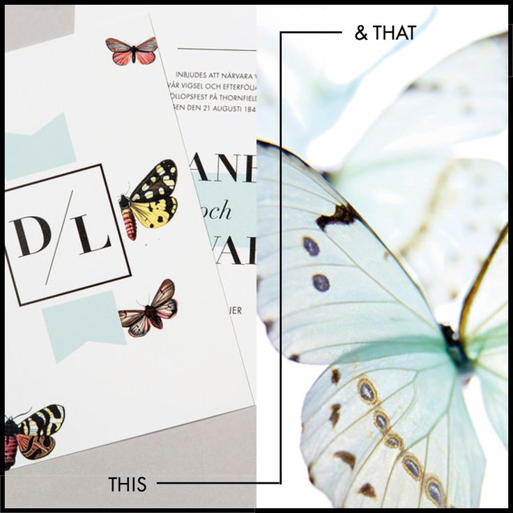 Butterfly Wedding Invitation and  beautiful butterflies of talented photographer Sandi Fellman. #wedding #weddinginvitations #invitations #butterfly #postedwithlove