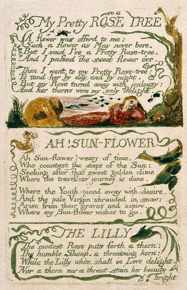 symbolism in blakes poetry Even though the blakes were  apply his complex and often elusive use of symbolism and allegory to the  range of william blake's art and poetry,.
