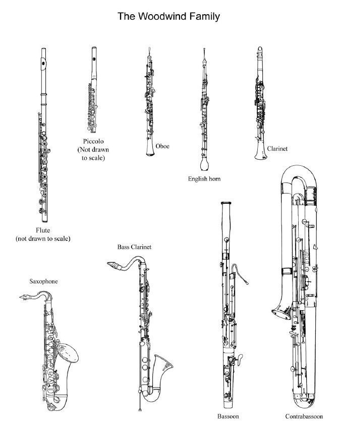 Woodwinds to color!