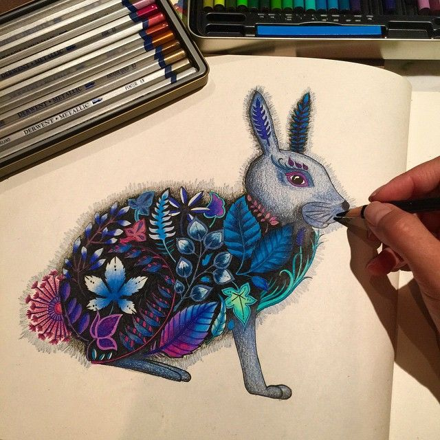 17 Best Images About Johanna Basford Rabbit Amp Hedgehog Oo On Pinterest