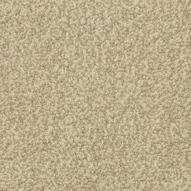 Stainmaster Hypnotized Petprotect Cobblestone Frieze Carpet Sample  S795953cobblest 0934