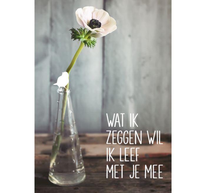 vrolijkfabriek.nl   Wat ik zeggen wil - wenskaart