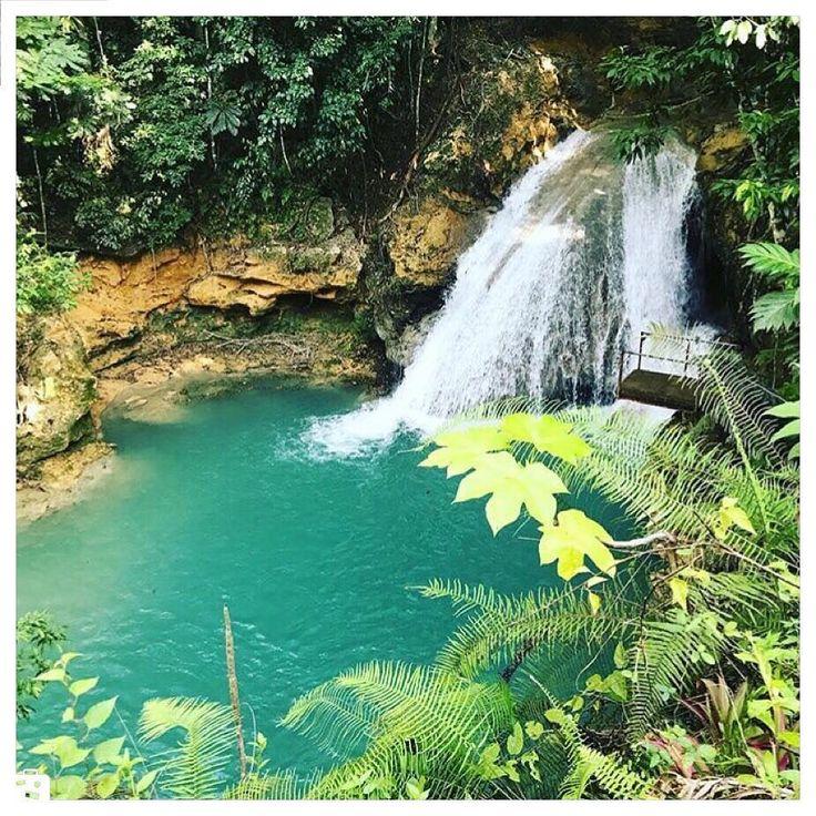 - -Jamaica USAجاماييكاآمريكا . #usa #jamaica #chamedoon #wiki #wikievent  #جاماييكا #آمريكا  #ويكي #ويكي_ايونت #چمدون  #كجا_بريم www.wikievent.net
