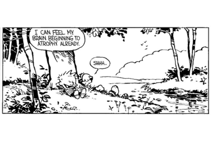 14 Best Calvin And Hobbes Images On Pinterest