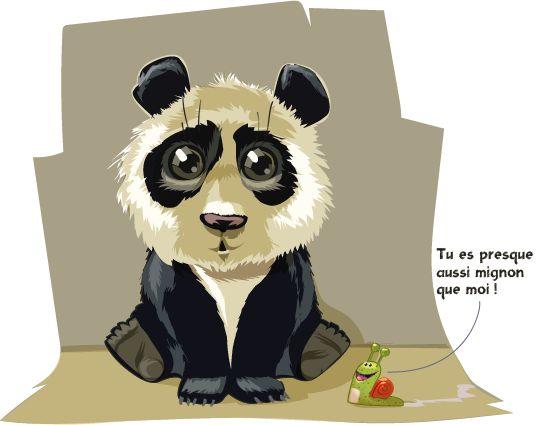 Le Panda c'est Géant ! - Avec son allure de gros nounours, le grand panda plaît à tout le monde. Pourtant, il est comme beaucoup d'autres grands animaux sauvages, menacé de disparition. Pour mieux le connaître, nous vous proposons d'aller à sa rencontre dans les forêts de bambou du sud-ouest de la Chine.