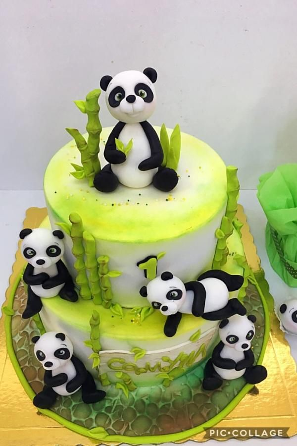 Sweet panda  by Dobi
