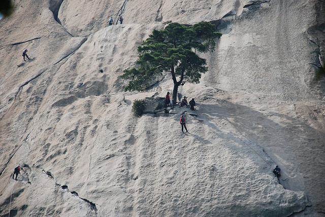 Dobongsan in Bukhansan National Park in Seoul, South Korea - Climbed Dobongsan with 3 policemen from Suwon over Memorial Day weekend in 1993. Seven pitches up the front (5.9) and four rappels down the backside. First 2 pitches up involved slabbing on smooth rock. Several routes converge and depart at the tree.