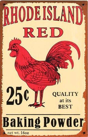 Rhode Island Red. http://4.bp.blogspot.com/-XK7GGLYzzb4/Tp82rteFzKI/AAAAAAAABAc/CdY_zP2cm1A/s1600/vingage+baking+powder+sign.jpg