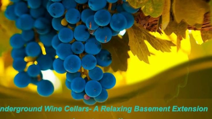 Most of the people find a relaxing mood while taking wines with the friends or family. There is no limit of enjoyment when you are with your family, love partner, friend or business partner. This is the reason; the wine room should be constructed in such a place where the common hue and cry does not enter. Visit: http://signaturecellars.com.au/.