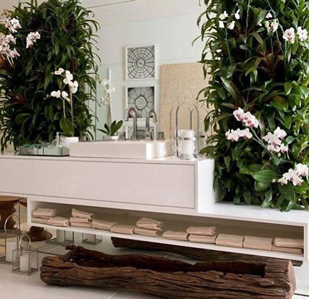 decoraçao_banheiros_plantas_arquitetura_banheiros_plantas_decoração_