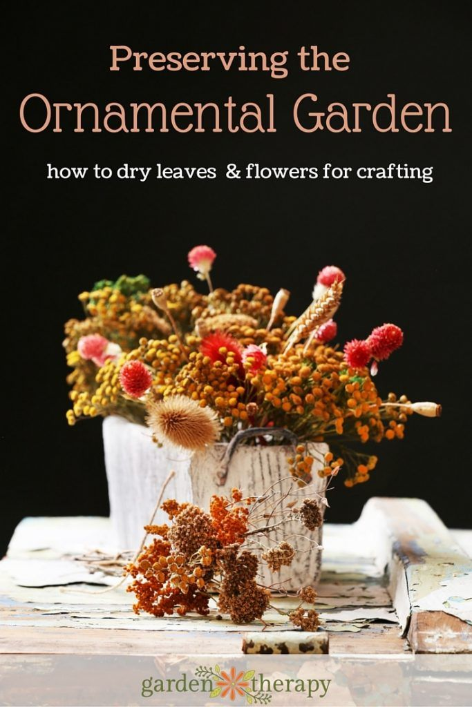 Before you clear away and clean up your garden for winter, try creating an ornamental bouquet with this guide from Garden Therapy. You can also use the dried plants for other crafts, like framed leaves or homemade cards.