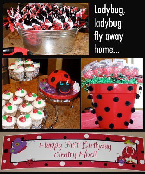 Ladybug, ladybug birthday party