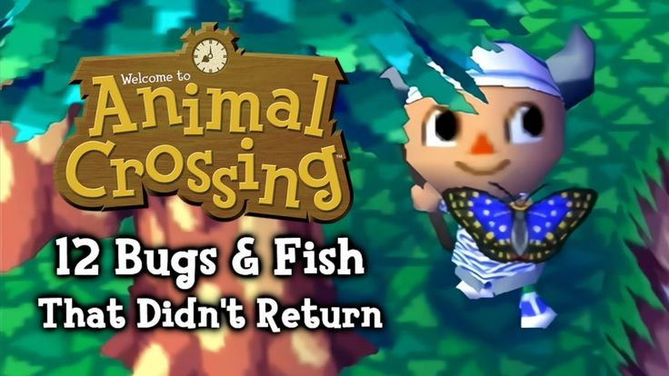 10++ Animal crossing november fish ideas in 2021