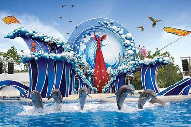 SeaWorld Orlando Planning Guide: What to do, where to stay, where to eat - and tons of insider tips!