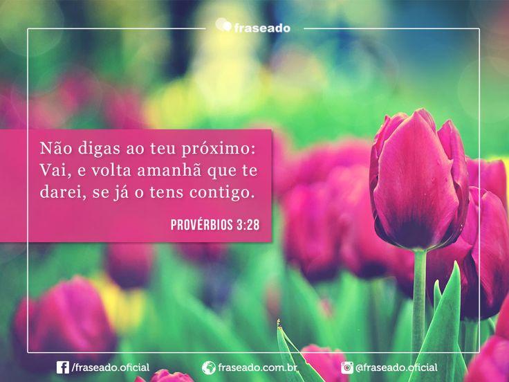 Não digas ao teu próximo: Vai, e volta amanhã que te darei, se já o tens contigo. Provérbios 3:28