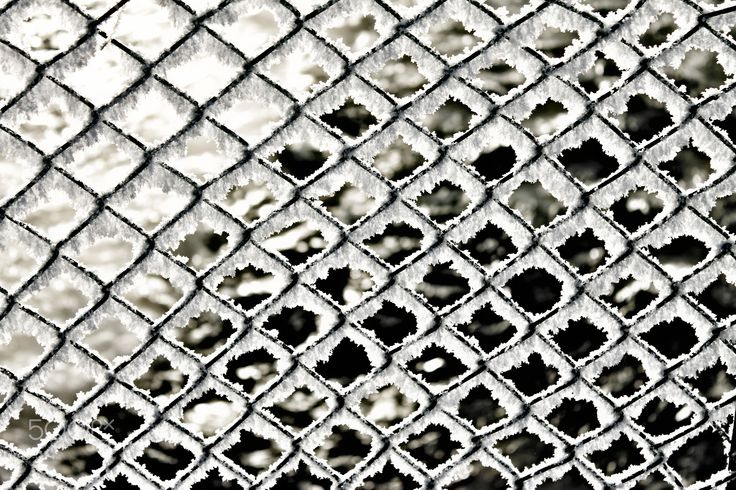 Ice Fence - A frozen wire fence on a bridge.