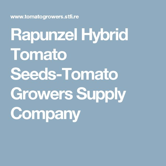 Rapunzel Hybrid Tomato Seeds-Tomato Growers Supply Company
