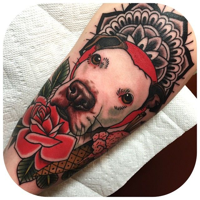 25 best ideas about pit bull tattoo on pinterest are for Traditional bull tattoo