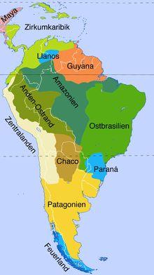 indianer südamerikas - Google-Suche