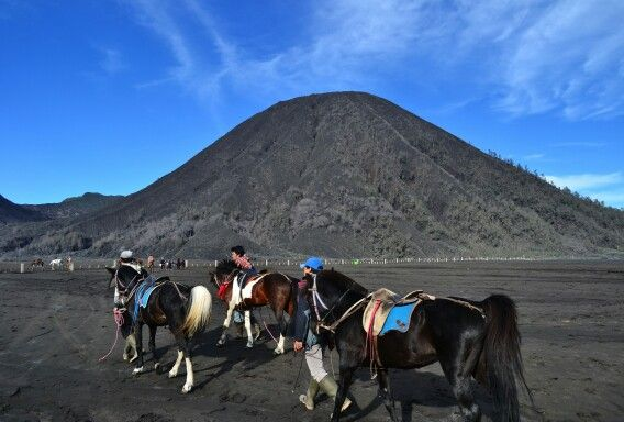 Feels so small under this mountain #bromo #mountain #malang #indonesia