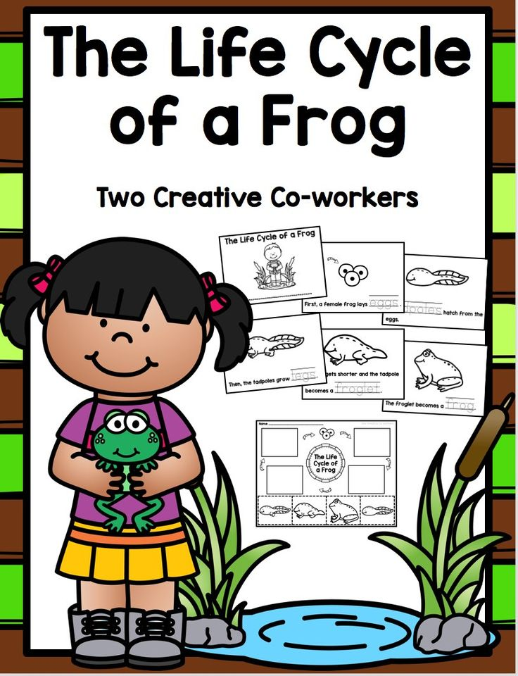 Oy Words Worksheet Excel  Best Ideas About Sequencing Worksheets On Pinterest  Worksheet For Class 3 with Worksheet Letter C The Life Cycle Of A Frog Printable Mini Book Worksheets  Cards Geometry Translation Worksheets