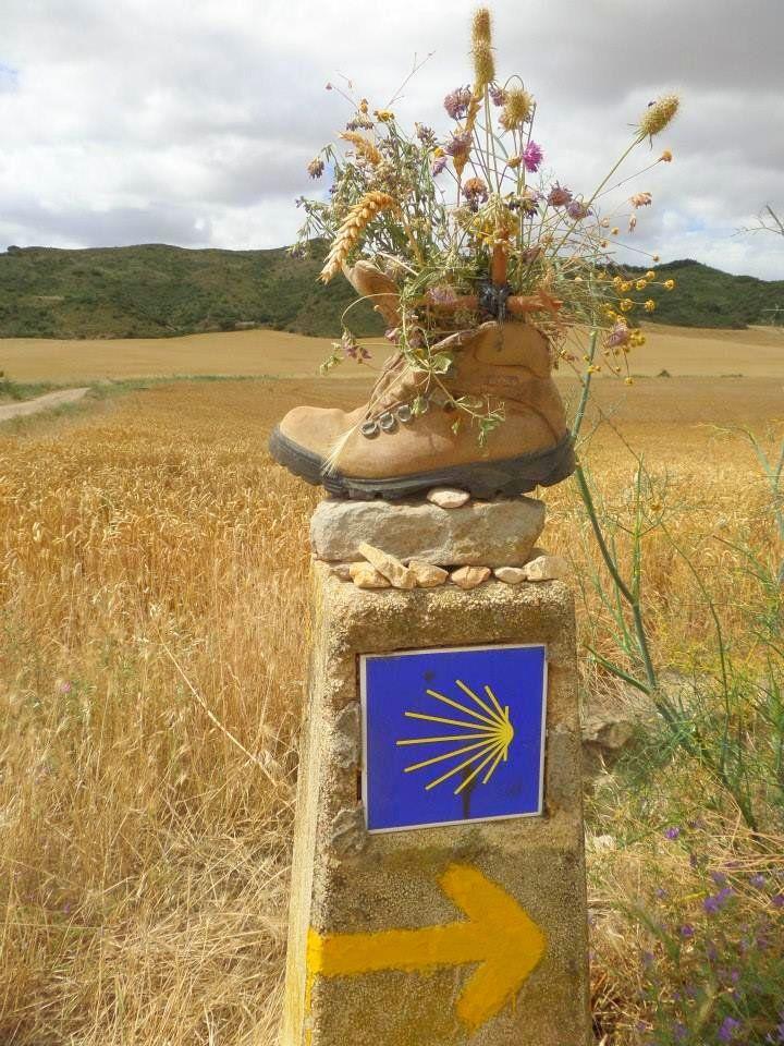 Trekking the Camino de Santiago de Compostela with Autism  Autistic Globetrotting