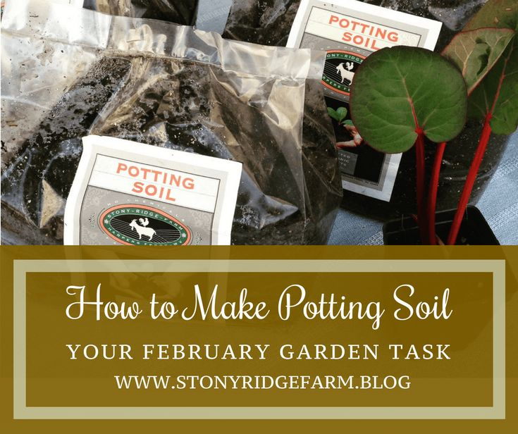 How to Make Potting Soil | February Garden Tasks | Stony Ridge Farm. Knowing how to make your own potting soil is essential for February seed starting and garden maintenance. Click for two of my best recipes for potting soil and a freebie download on seed starting.