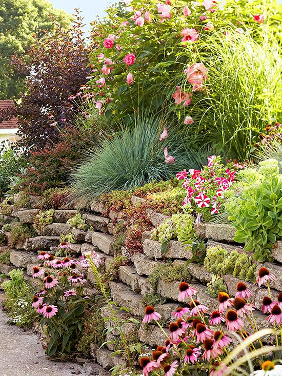 A retaining wall creates planting opportunities when you select construction materials that allow you to plant in nooks and crannies along the wall's surfaces. Sedums spill from spaces in a 4-foot-tall retaining wall made of dry-stacked salvaged concrete. Test Garden Tip: Other crevice-loving plants include creeping phlox, rock cress, thyme, hens-and-chicks, sweet alyssum, trailing lobelia, snow-in-summer, and candytuft./