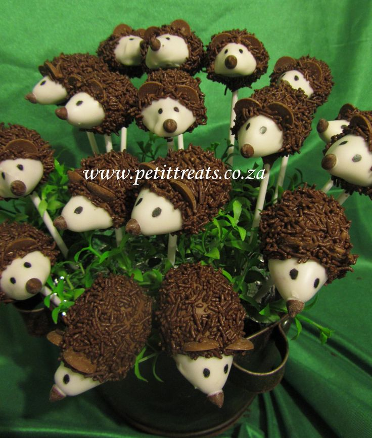 Hedgehog Cake Pop Display Cake Pops By Petit Treats