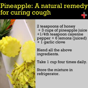 Pineapple: A natural remedy for curing cough | #survivallife www.survivallife.com