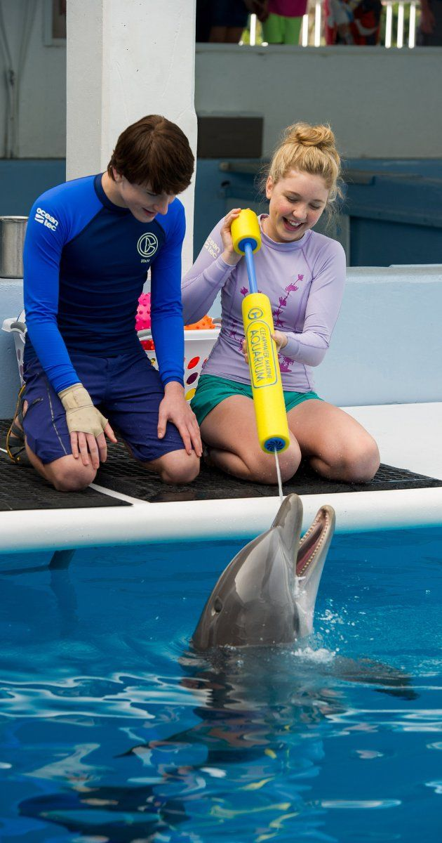 Hazel, Sawyer and Winter having some fun in Dolphin Tale 2