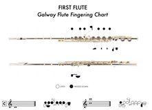 Flute Fingering Chart  Music    Flutes