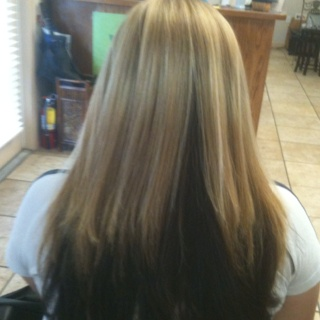 Blonde Top Dark Brown Underneath Hairstyles Pinterest