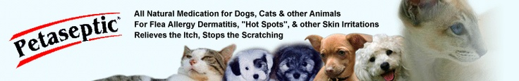Petaseptic: Pet Meds for the Care of your Dogs and Cats - Wonderful product I found for animals with problem skin and flea allergies!