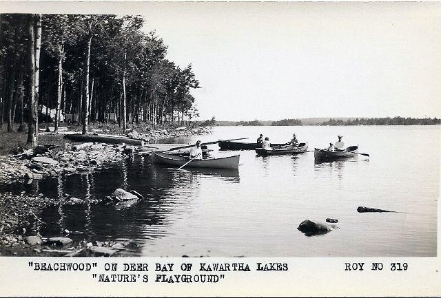 """Beachwood"" on Deer Bay of the Kawartha Lakes #NaturesPlayground"