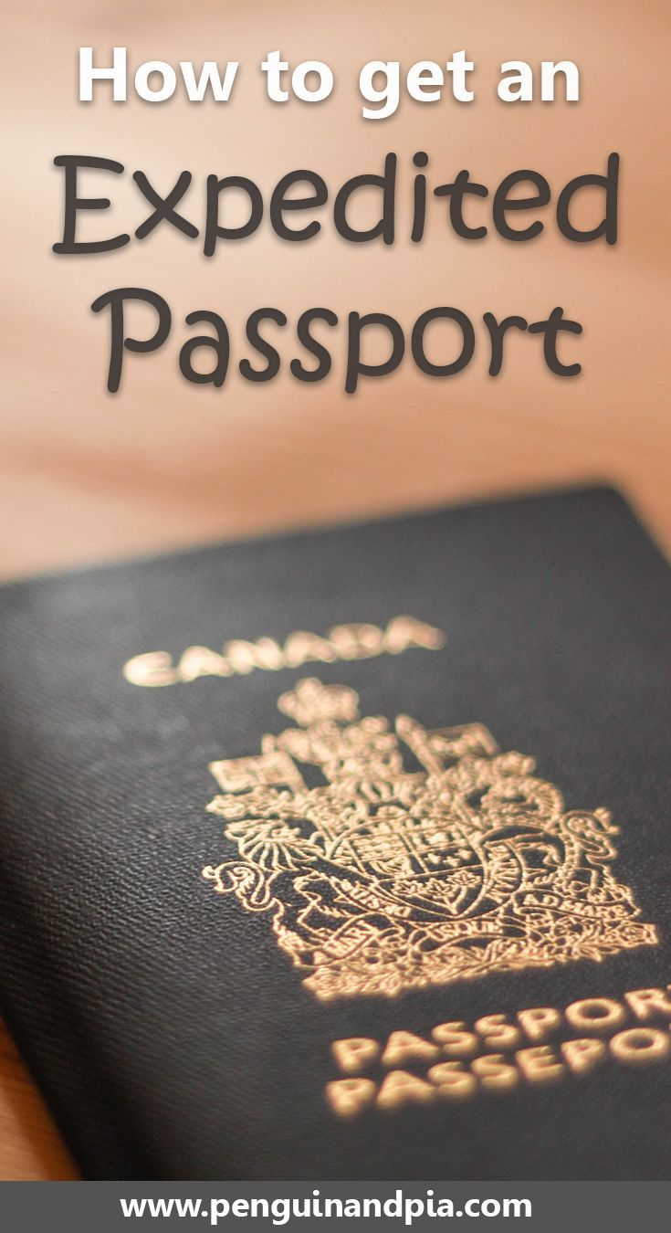 Best 25 passport renewal ideas on pinterest where to renew how to get an expedited passport fast ccuart Images
