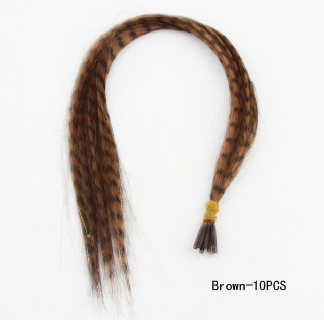 Feather Hair Brown fashion Omber Hair