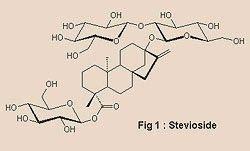 Stevia un endulzante de la naturaleza: Estudios de la Stevia rebaudiana en la tolerancia ...