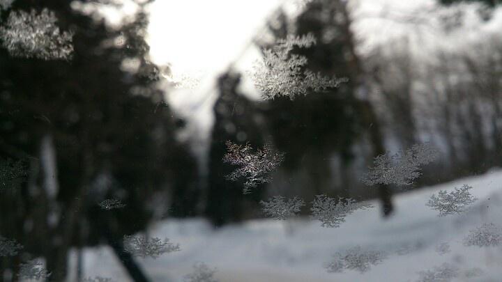 Freezing morning