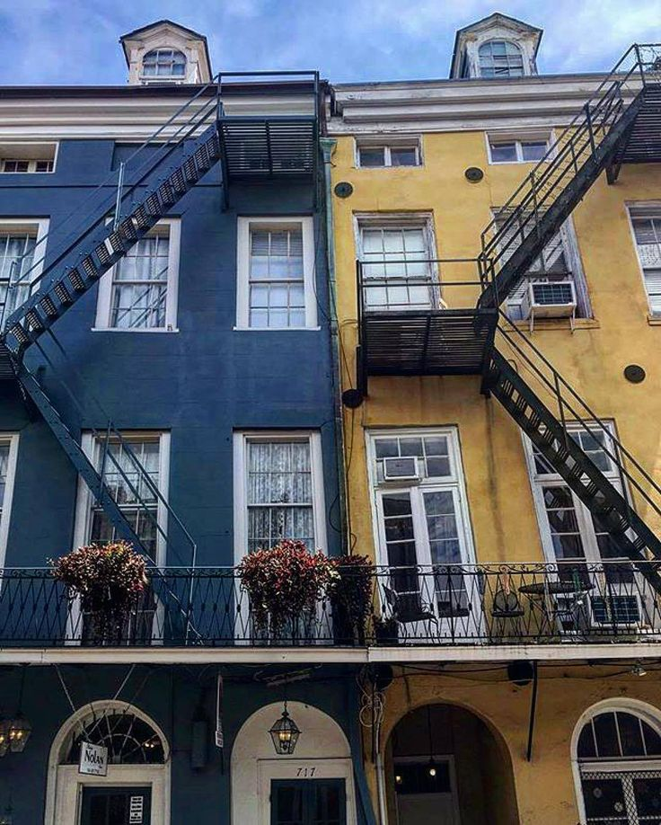 Our neighbors look particularly beautiful today. (Photo by @frenchquarternola via Instagram)