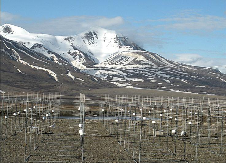 Svalbard météo Ny Alesund