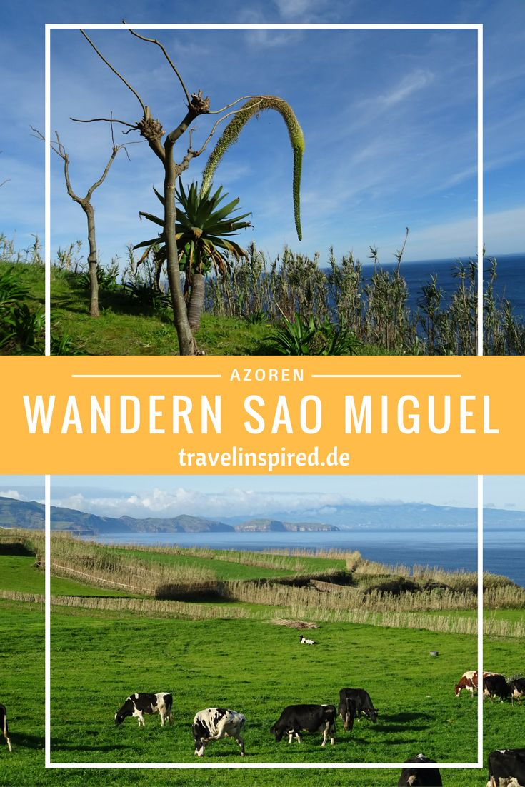 Super schöne und abwechslungsreiche Wanderung ab Fenais da Ajuda auf Sao Miguel!