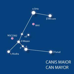 Las constelaciones más fáciles de reconocer en el cielo: Can Mayor - Canis Mayor