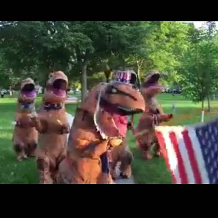 #Repost T-Rex Tuesday wishing everyone a Happy 4th of July!  Just another fabulous thing you an do with a T-Rex Inflatable Costume  We have them in stock! Contact us at 585-482-8780 or order them on our website www.arlenescostumes.com  #trex #4thofJuly #fourthofjuly #trexantics  https://youtu.be/eubcoC1JfSk