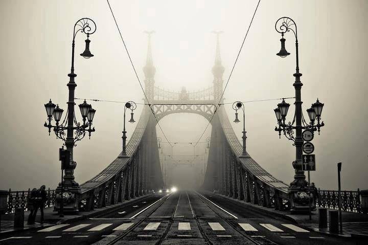 """. Cerró los ojos en la fusión total, rehuyendo las sensaciones  de fuera, la luz crepuscular; repentinamente tan cansada, pero segura de su victoria, sin  celebrarlo por tan suyo y por fin."""" Lejana Cortazar- Budapest, the Liberty Bridge"""