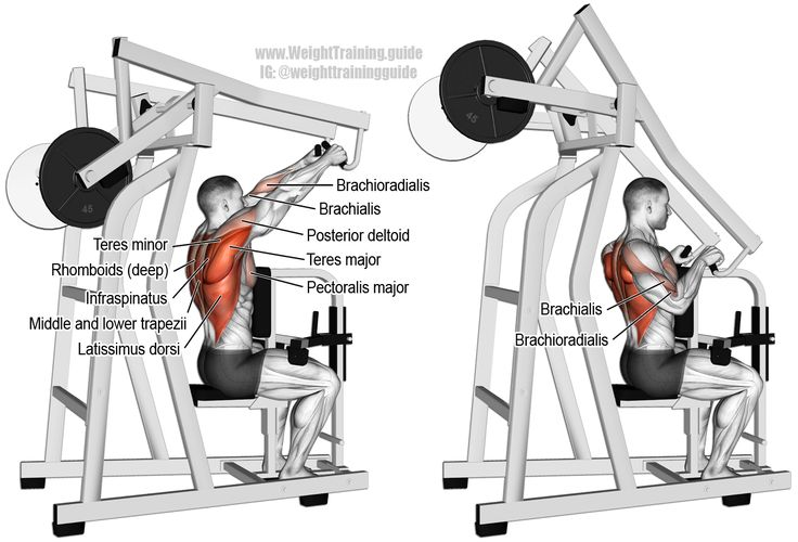 Machine High Row Exercise Instructions And Video Back