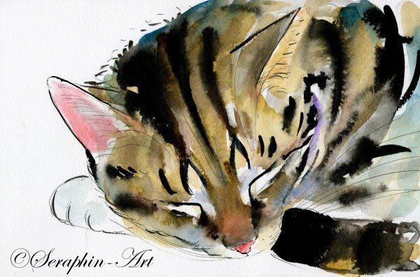 2011 06 171 Katze Aquarell Zeichnung Cat Art Illustration Cat