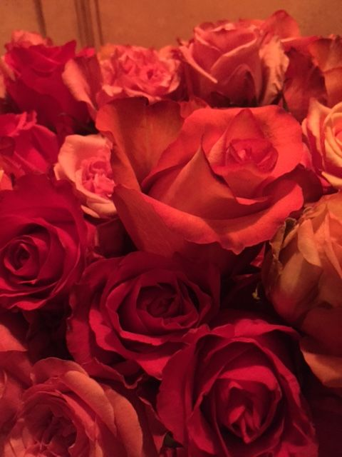 part 1 - Day off | Costes | roses | Paris | September 2015