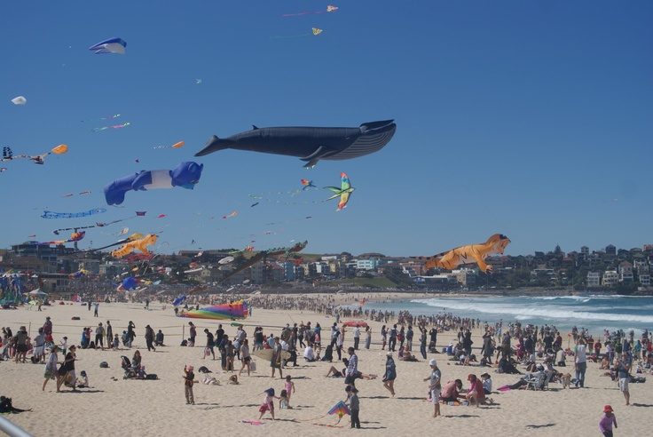 Festival of the Winds at Bondi Beach.    The largest and most exciting kite flying event in Australia.  #Kite #BondiBeach #Australia